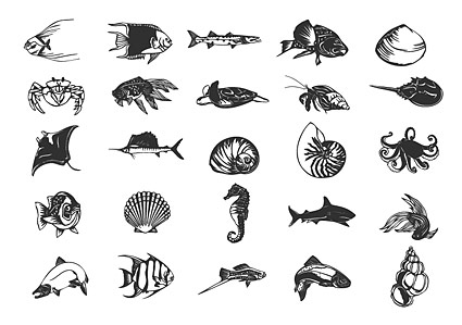 Keyword: black and white line drawing hippocampus hermit crab shells and