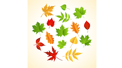 Link toColor leaf design vector material