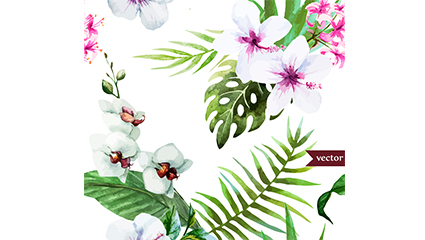 Link toWhite hibiscus and butterfly orchid vectors