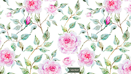 Vector pink roses watercolor