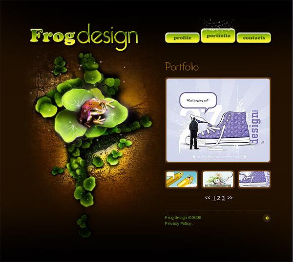 Exclusive designer-wide flash templates