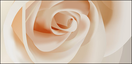 Link toVector white roses close-up material