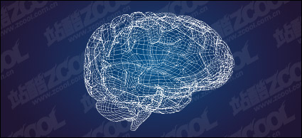 Link to3d model of the brain-style vector material
