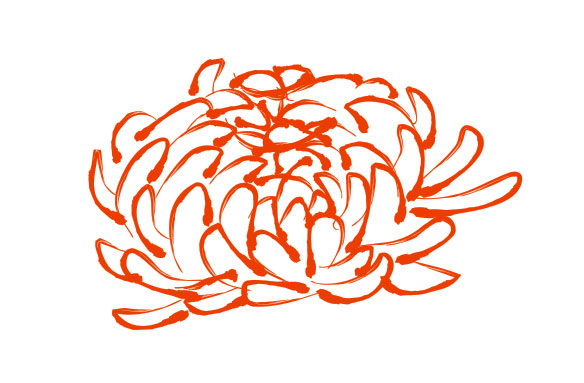 Chrysanthemum Pattern Vector Download Free Vector Psd