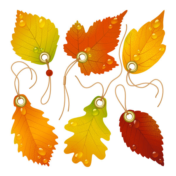 Exquisite maple leaf bookmarks vector of material