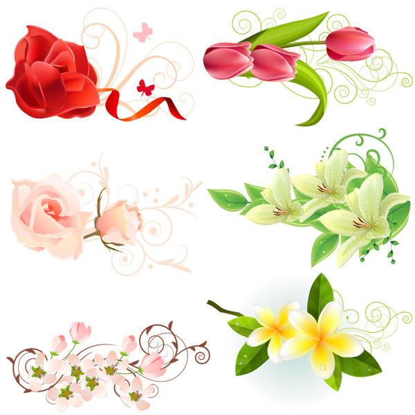 Beautiful flowers - vector material