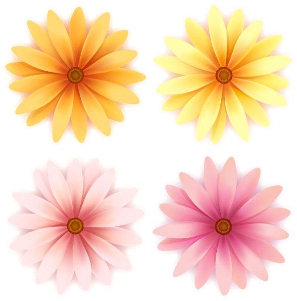 Beautiful small flowers vector material -3