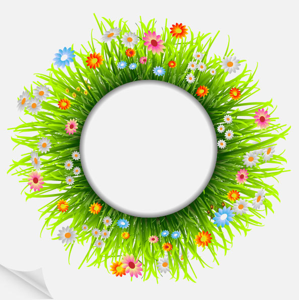 Flower Plant Png Grass Flower Png