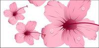 Wasser mit rosa Blumen Vektor Material