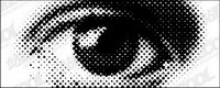 Runde Augen Vektor Netzwerk Material