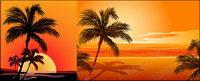 Coco vectores afectan a la orilla del mar la puesta de sol de material