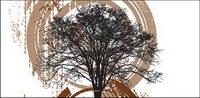 Vector illustration arbre th��me mat��riel