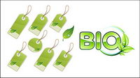 Green leaf material tag vector