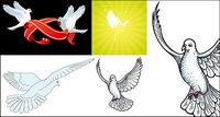 palomas vector material