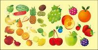 Vari��t�� de fruits vecteur mat��riel