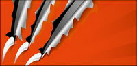 Claws Schnitt durch das Papier Material Vektor