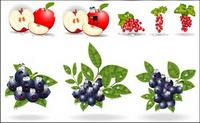 Vector Material mit den Augen von Obst