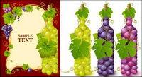 Botellas llenas de material de vectores de uva