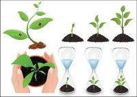 Vector Pflanzensämlinge