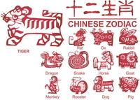 Zodiac mod��les sont nouveaux Vector 12