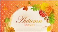 Bel automne feuilles de fond 05 châssis - mat��riel vecteur