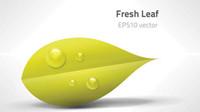 Gr��ne Blätter Vektor-Material