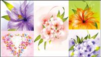 Schöne Blumen - Vektor