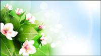 Belle vecteur mat��riel fleurs -2