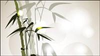 Tinta vector material de bamb¨²