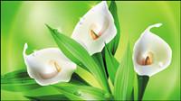 Belles fleurs - vecteur 02