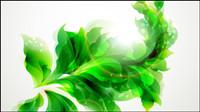 Motif de fond color�� 04 - mat��riel vecteur