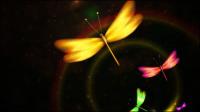 Bunte Libelle - Vektor Material