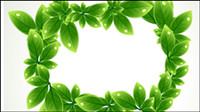 Vert fronti��re forme de la feuille 03 - vecteur