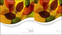 Autumn leaves design Vektor Material -3