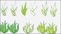 Mat��riel vecteur Aloe