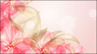 Flores de colores de fondo 03 - vector de material