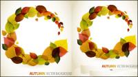 Autumn leaves graphique vecteur mat��riel dessin -4