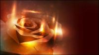 Mat��riel vecteur symphonie de fleurs -4