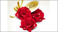 Schöne Rosen 03 - Vektor Material