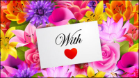 Valentine fond de fleurs 01 - mat��riel vecteur