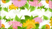 Blumenblumenblatt Spitzen Hintergrund 02 - Vektor Material
