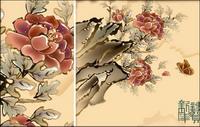 Papillon, fleur faste du Nouvel An photos
