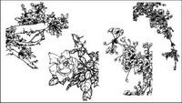 P��che en bois, Dicentra spectabilis, rose chinoise