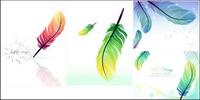 plumes color��es vecteur