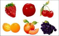 Ultra-feine Frucht Vector Material
