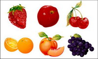 Ultra-fino de fruta Vector material de