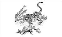 Tiger Classic mat��riel Vector