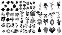 Les fleurs et les arbres, les plantes ornementales bambou