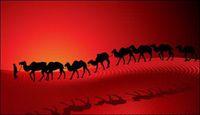 Camel Silhouette Sunset Desert Caravan Vector fond rouge