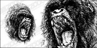 F��roce gorille vecteur mat��riel